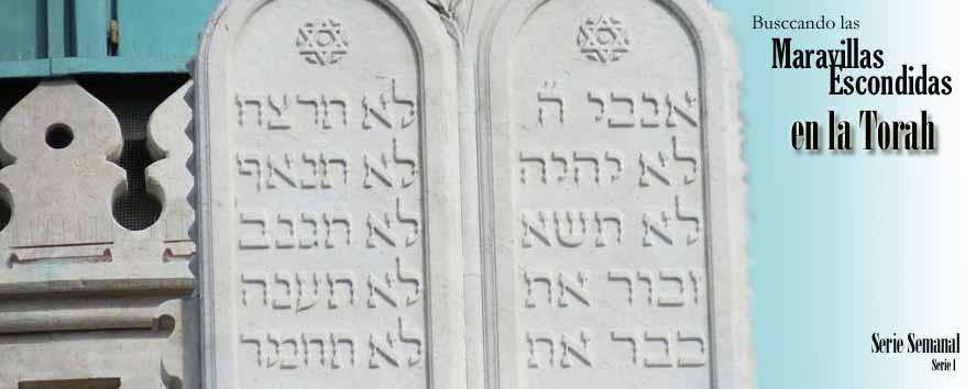 Maravillas Escondidas en la Torah (1/6)