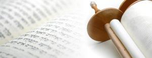 TorahBanner