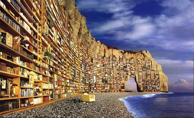 Biblioteca (pdf)