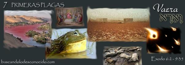 14 Vaera  Exo 6-2 a 9-35   Maravillas Escondidas en la Torah