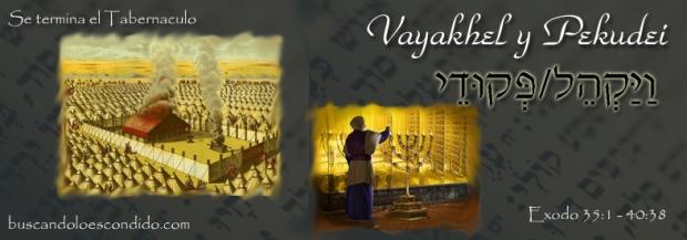 22 Vayakhel  Exodo 35-1 a 38-20   y  23  Pekudei Exodo 38-21 a 40-38