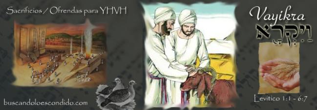 24 Vayikra  Lev 1-1 a 5-26