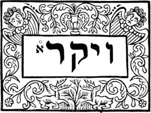 Maravillas Escondidas en la Torah (4/6)