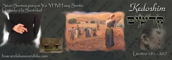 30 Kedoshim   Lev 19-1 a 20-27
