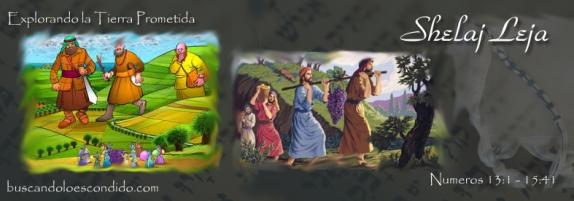 37  Shelaj Leja    Numeros 13-1 a 15-41