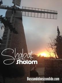 ShabatShalom 030516