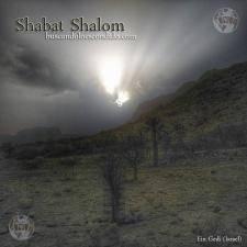 ShabatShalom 110515