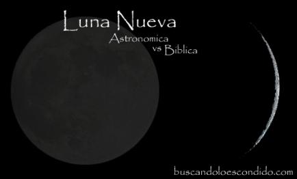 Luna Nueva copy