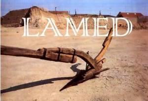 LAMED 2