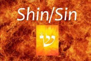shin1