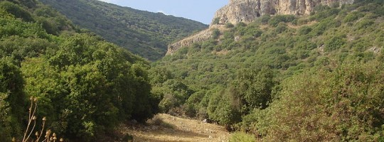monte-do-carmelo-540x2001