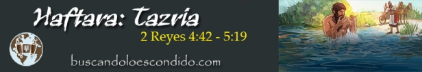 27. Haftara  Tazria  2 Reyes 4-42 a 5-19   Profetas_Los Libros Sellados