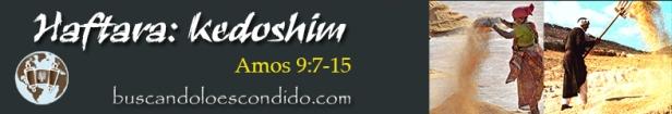 30. Haftara  Kedoshim  Amos  9-7 a 15   Profetas_Los Libros Sellados