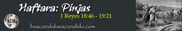 41. Pinjas  1a Rey 18-46 a 19-21   Profetas_Los Libos Sellados