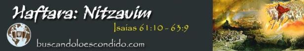 51. Haftarah Nitzavim  Isaias 61-10 a 63-9   Profetas_Los Libros Sellados.jpg