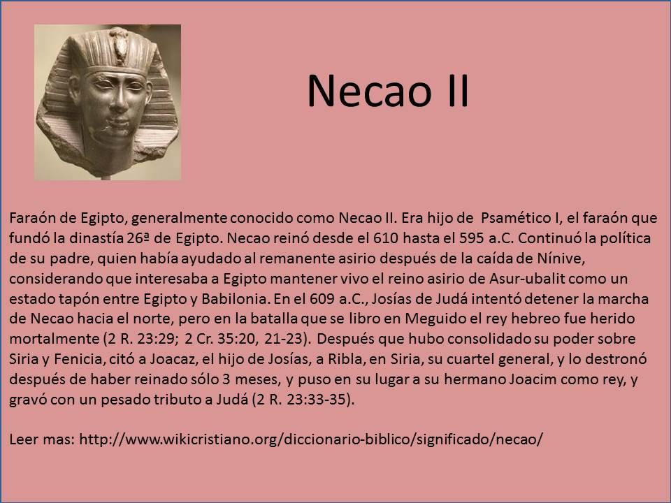 necao-ii