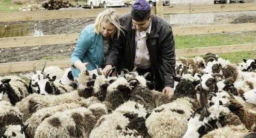 gil-and-jenna-feeding-the-sheep-1-e1465045975626