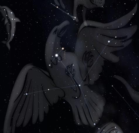 aquila-constelacion