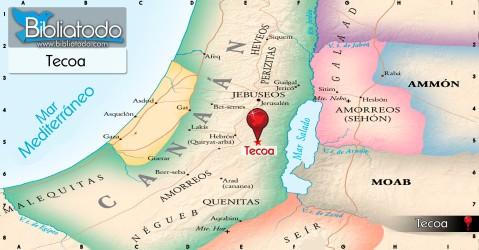 ubicacion_geografica_tecoa