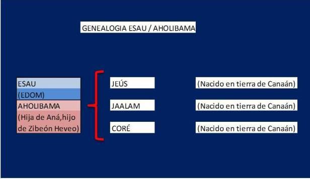 Genealogia ESAU con AHOLIBAMA