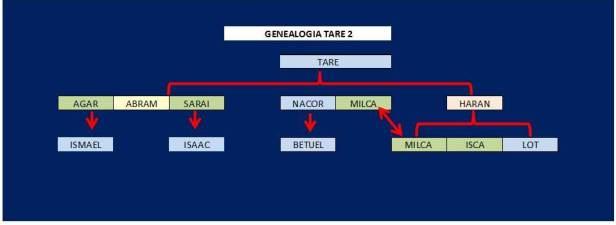 GENEALOGIA TARE 2
