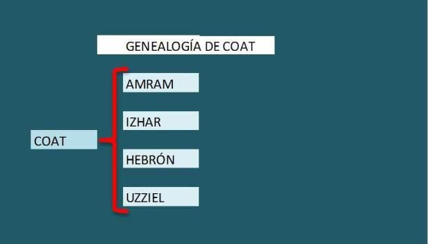 2 genealogia de COAT