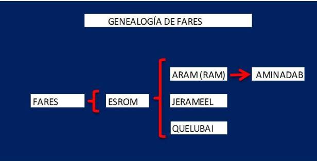 Genealogía de FARES