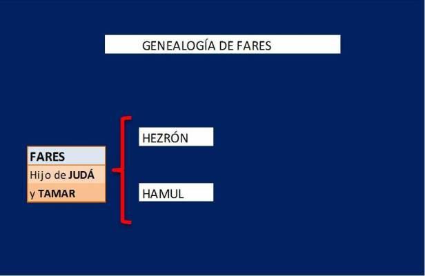 Genealogía de FARES.jpg