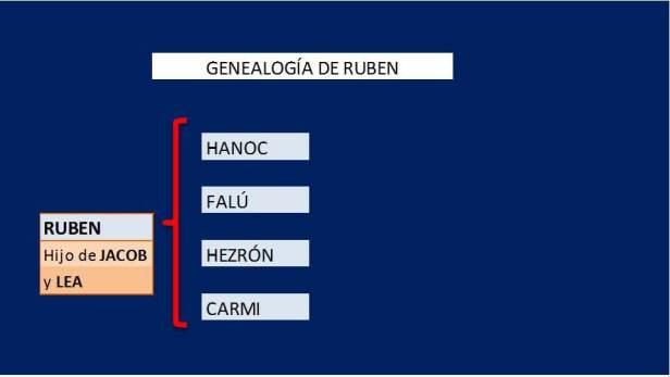 Genealogía de RUBEN
