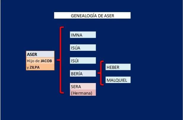 GENEALOGIA DE ASER