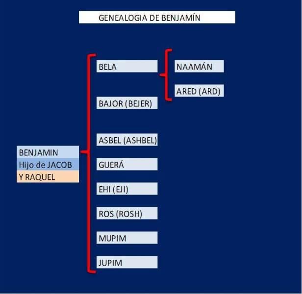 GENEALOGIA DE BENJAMIN