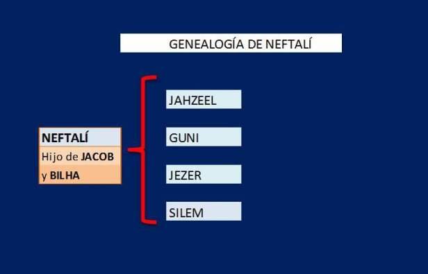GENEALOGIA DE NEFTALI
