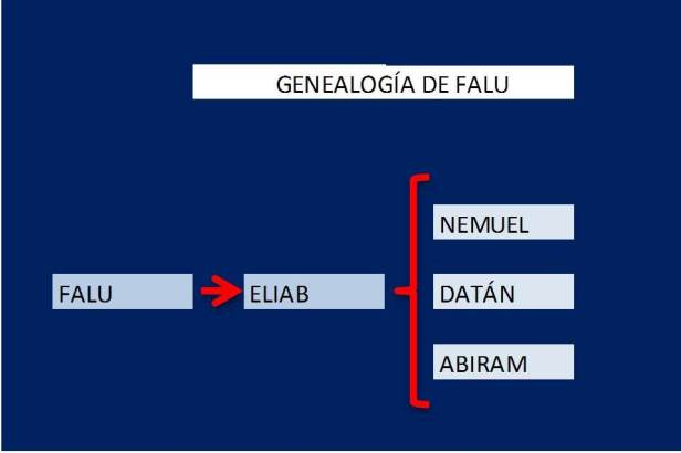 genealogia falu